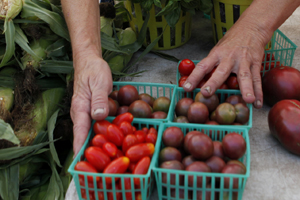 Organic vs inorganic: Cost and appearance still important