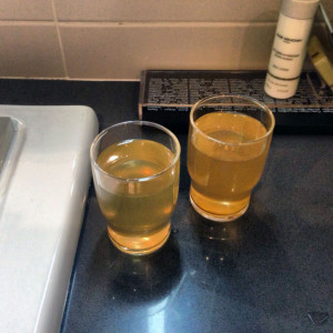 Chicago Tribune journalist, Stacy St. Clair's tweet of her Sochi hotel's contaminated water goes viral.