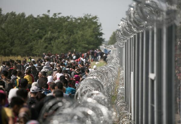 Hundreds of the refugees and migrants along a new fence built by Hungarian authorities.