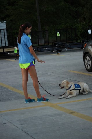 Southeastern Guide Dog's mission is to create and nurture a partnership between a visually impaired individual and a guide dog, facilitating life's journey with mobility, independence and dignity. However before this can happen, the dog must go through serious training.
