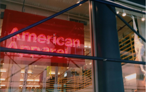 American Apparel filed for bankruptcy on October 5th this year and it is questionable how much longer they can sustain business.