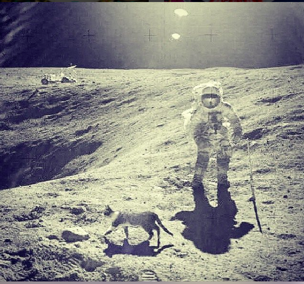 Questions swirl about what really happened on the moon in 1969, if anything.
