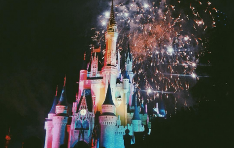 On the last night in Magic Kingdom, all of the Disney travelers join to watch the fireworks together, Credit: Rachel Tata (used with permission)