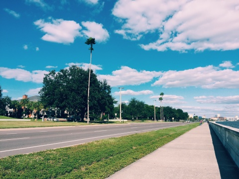 Tampa is home to the world's longest continuous sidewalk, Bayshore Boulevard. It's 4.5 miles long!