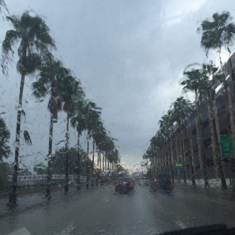 On Friday, Tampa had 30 mph winds but not much rain.