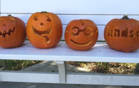 Hyde Park has a variety of pumpkins from large to small.