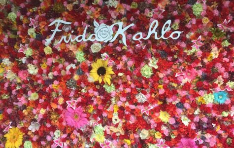 Credit: Rachel McKenna/Achona Online Outside the exhibit is a flower wall, perfect for taking photos in front of.