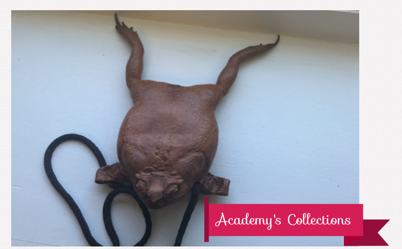 One student gave Sloshberg a taxidermy frog purse. Photo Credit: Sara Phillips/ACHONAOnline