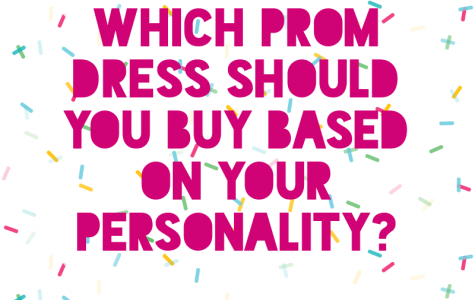 (Photo Credit: Gretchen Swenson/ Achona Online) Some affordable websites to buy dresses include Lulus, PromGirl, Love Culture, and ASOS.