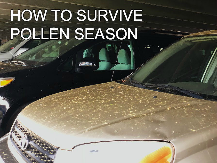 The pollen count has been noticeably higher this year