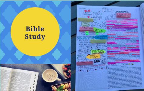 New Bible Study Group at AHN