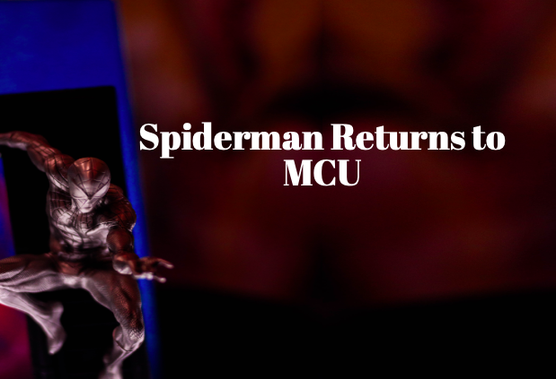 Thousands on social media are estatic that Spiderman will remain in the MCU, especially due to the fact that Holland's Spiderman has earned the most revenue of any Spiderman.