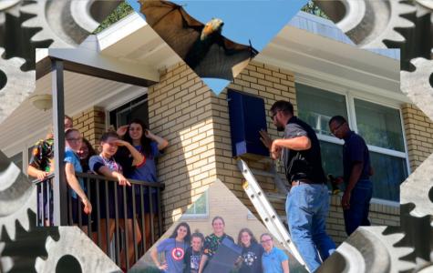 AHN's Engineering Class Installs Bat Houses