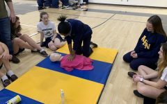 The Sophomores Attend CPR Training