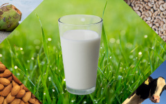Over the last 5 years, milk alternative sales have risen 61%.