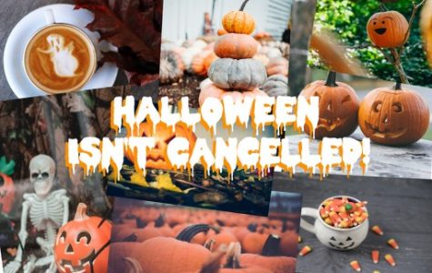 Below are seven fun Halloween activities in Tampa that allow participates to stay safe in the midst of COVID-19.