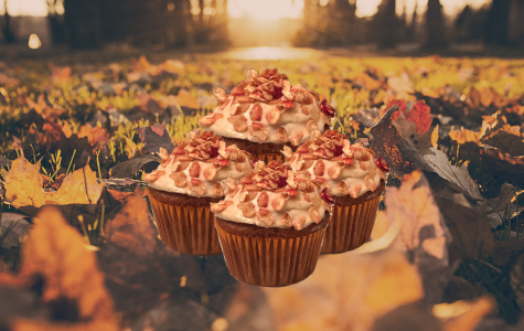 With September 22 marking the beginning of autumn, apple cider cupcakes (as well as other fall favorites) are a great way to ring in the new season.