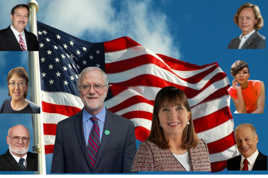 In the 2020 Election, there were nine third-party candidates. Most popular being, Howie Hawkins from the Green Party and Jo Jorgensen, a Libertarian.