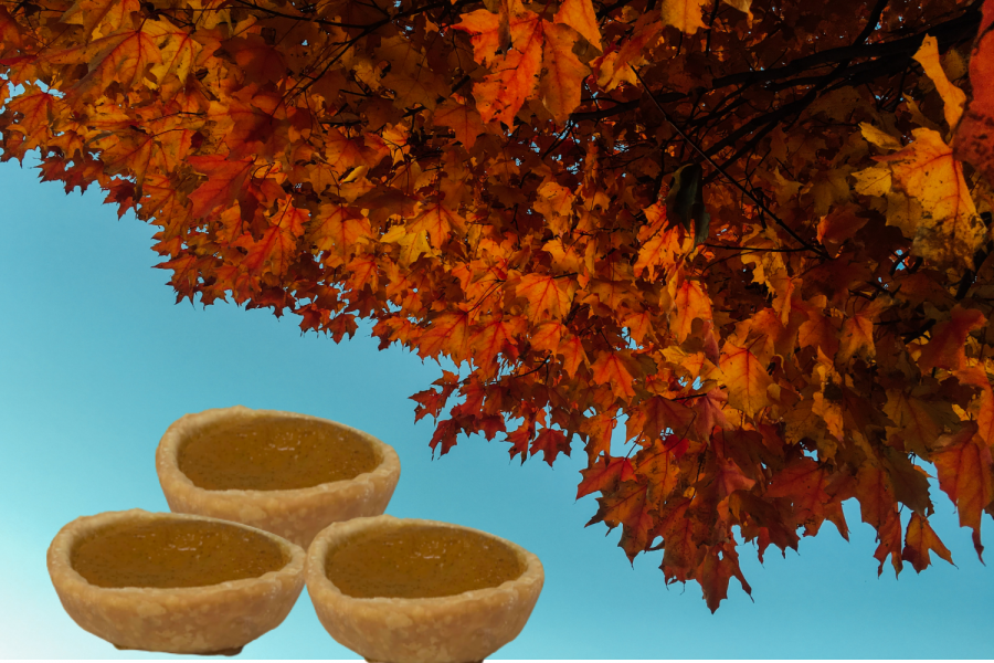 Thanksgiving is on November 26 this year, and pumpkin pies are a great dessert to make to celebrate early.