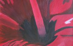 The Hibiscus