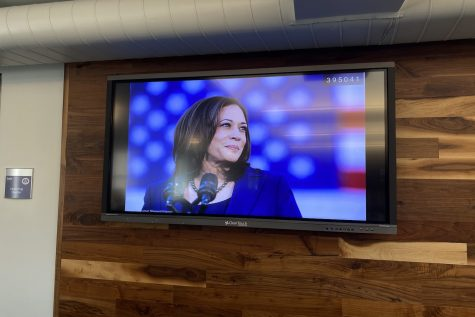 Vice President Kamala Harris said during a briefing, Thank you Mr. President for having confidence in me. We must address the root causes that cause people to make the trek, to come here.