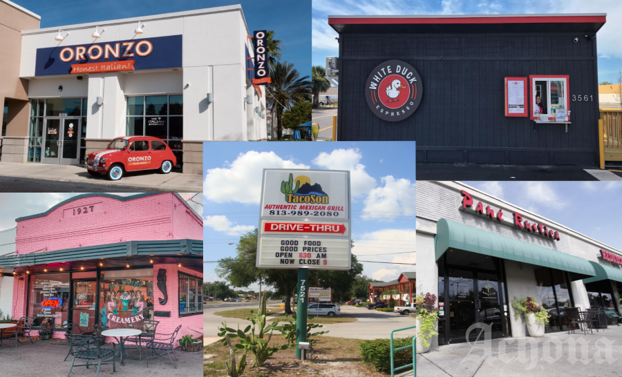 These restaurants are located all around Tampa Bay ad are perfect to try if you are looking for new options