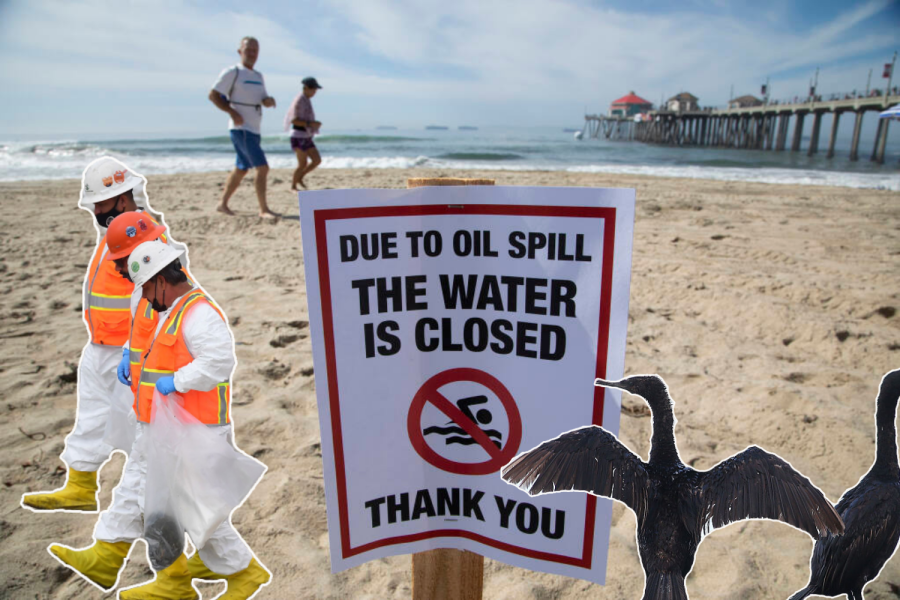 The oil spills impact on the habitats of wildlife and Huntington Beach residents.